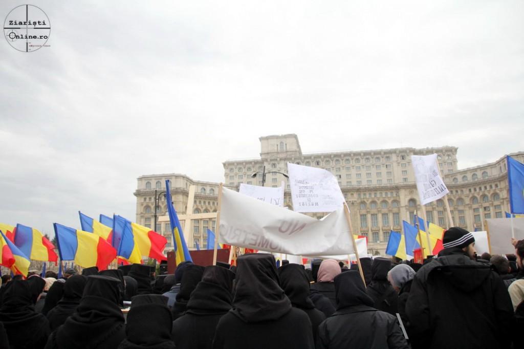 Miting anti-cip la Parlament 14.03.2013 - Foto Ziaristi Online - Roncea Ro 05