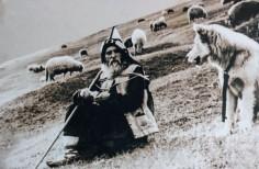 Părintele Cleopa (+ 2 Dec. 1998) – Povestea drepturilor omului