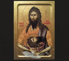 Sfîntul Ioan Botezătorul, Mănăstirea Secu şi Părintele Visarion Duhovnicul
